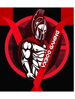 Vx300 Gaming